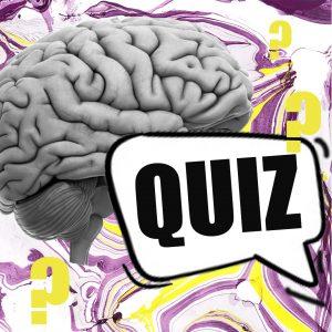 Vorstellung Quiz Feed